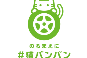 「猫バンバン(KNOCK KNOCK CATS)」って知っていますか?