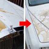【画像】【洗車術】洗車感覚で手軽にコーティングできる『スパシャン』