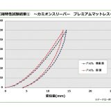 【画像】【丸八プロダクト】ジェットイノウエ『カミオンスリーパー』開発現場を直撃