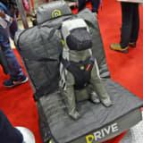 愛犬を万一の事故から守る!ワンちゃん用「 ドライブグッズ」3選