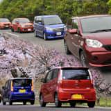 高額化したイマドキ軽自動車とコンパクトカー! 買って得するのはドッチ?